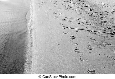 The beach with footprints in the sand. - The beach with...