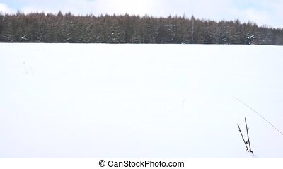 Man with snowshoes walk in snowy filed. Hiker in red winter...