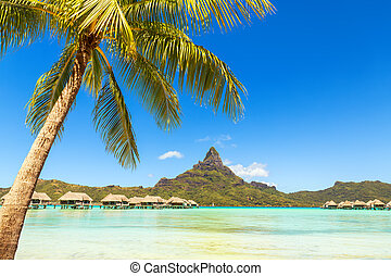 View of the Otemanu mountain with palm tree and stunning lagoon. Bora-Bora. Tahiti. Polynesia