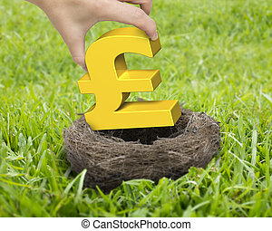 Woman hand holding golden pound sterling symbol in nest on...