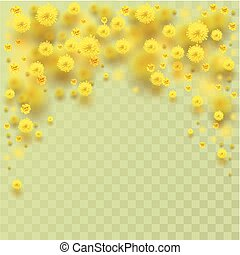 Yellow fluffy mimosa flowers fall. Vector illustration of...