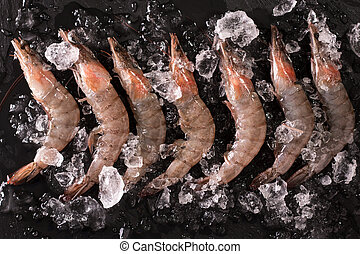 Fresh tiger shrimp on ice on a black table , seafood concept