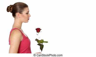 woman holding red rose and smiling on a white background. -...