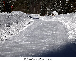 Snow calamity on forest road, forest road in the winter