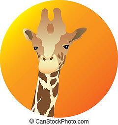 Giraffe  - Giraffe. Vector illustration for you design
