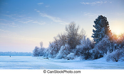art beautiful winter background; winter landscape On A Hoar Frost