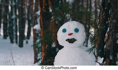 Face of Snowman in a Pine Forest Standing Outdoors - Face of...