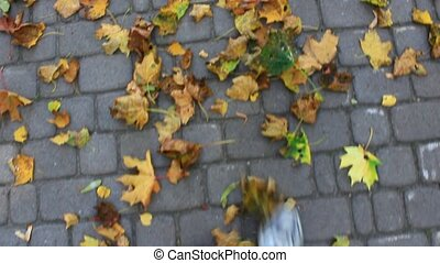 feet walking on the road with autumnal leaves - feet walking...
