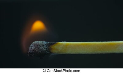 Wooden match burning. Black background. Extreme macro shot