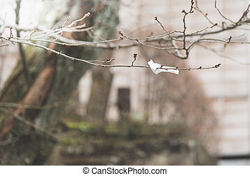 paper tied on the tree - Fortune paper tied on the tree in...