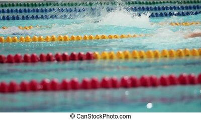 Competition in sports swimming in the pool close to