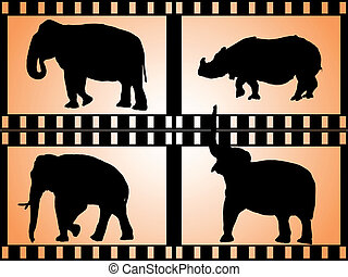 african animals - collection film strips with african...