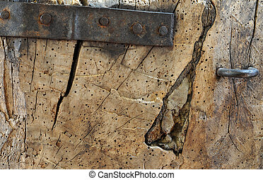 Old, cracked piece of wood with woodworm