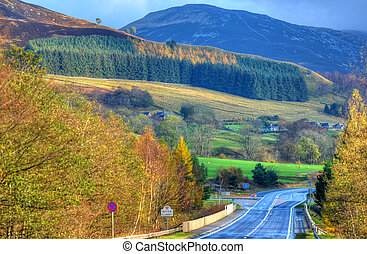 Colorful scenic view of the Scottish highlands in summer