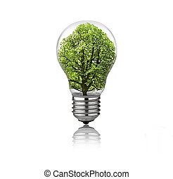 Lightbulb with tree inside isolated