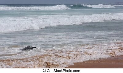 Ocean storm. View from beach. - Ocean storm and boiling...