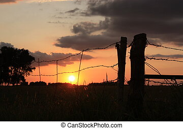 Fence Line Sunset