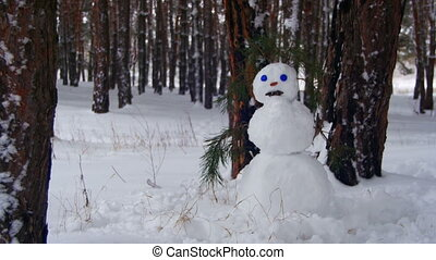 Snowman in a Pine Forest Standing Outdoors - Face of Snowman...