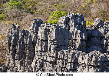 Tsingy rock formations in Ankarana, Madagascar - Curiously...