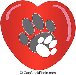 Paws with heart on white background