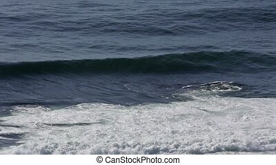 Ocean surf waves. - Ocean surf waves with foam and splashes....