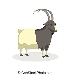 goat color illustration design