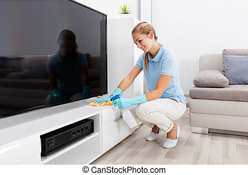 Woman Cleaning The Furniture Of Living Room
