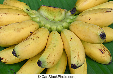Bunch of bananas on leaf background