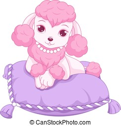 Mini Poodle - Glamorous poodle resting on a pillow