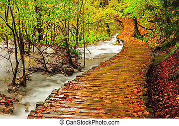 Rainy day and wooden tourist path in Plitvice lakes national...