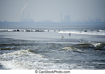 Sea with a industrie skyline on the background