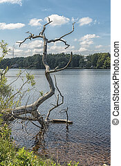 Kronobergs Castle Ruin Lake - The lake by Kronobergs castle...