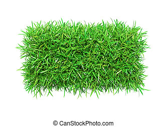 Green grass minus, isolated on white background. 3D...