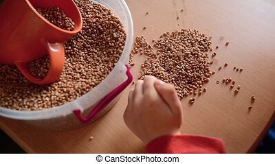 baby hands play with the grain of buckwheat on wooden table. Boy draws face on beans