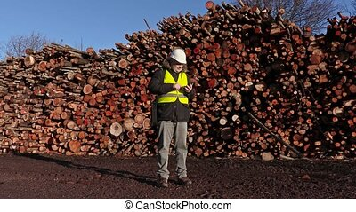 Engineer using tablet near piles of logs