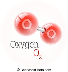 Chemical model of oxygen molecule. Assembly elements. Atoms....