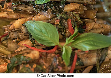 clam razor shell Solenidae stir spicy with paste and basil