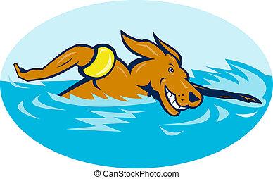 caricatura, cão, natação