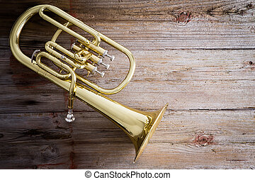 Baritone Horn on a Wooden Floor with Copy Space - Glossy...