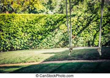 Swingin - A tree swing on a corner in Coronado, California.