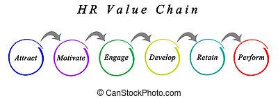HR Value Chain