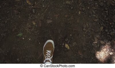 Legs man walking, view from above. - human legs walking on a...