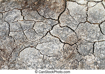Cracked earth in a Danish landscapes in the summer - Danish...