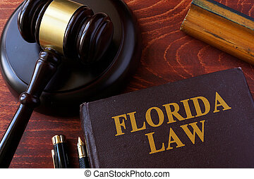 Book with title Florida law and a gavel.