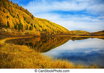 autumn landscape with lake and cloudy sky