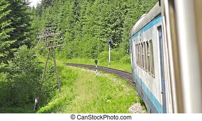 views from train window - Carpathians forest views from the...