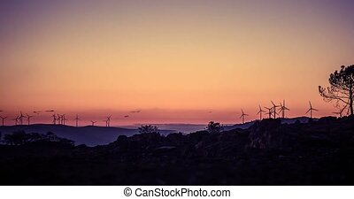 Time Lapse, Sunrise At Wind Energy Plant, Portugal