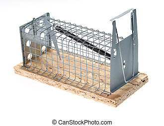 mousetrap over a white background