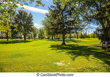 Golf Course surrounded by autumn park - Concept of Golf...