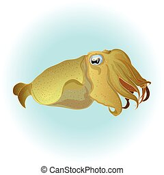 Cuttlefish vector drawing. Edible marine mollusk with...